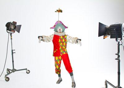 1983 Fantasía: Marioneta del Gobierno